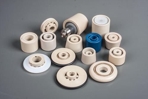 China Special engineering plastic PEEK bearing
